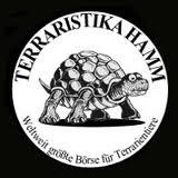 Hamm (09/2014) Logo_terraristika
